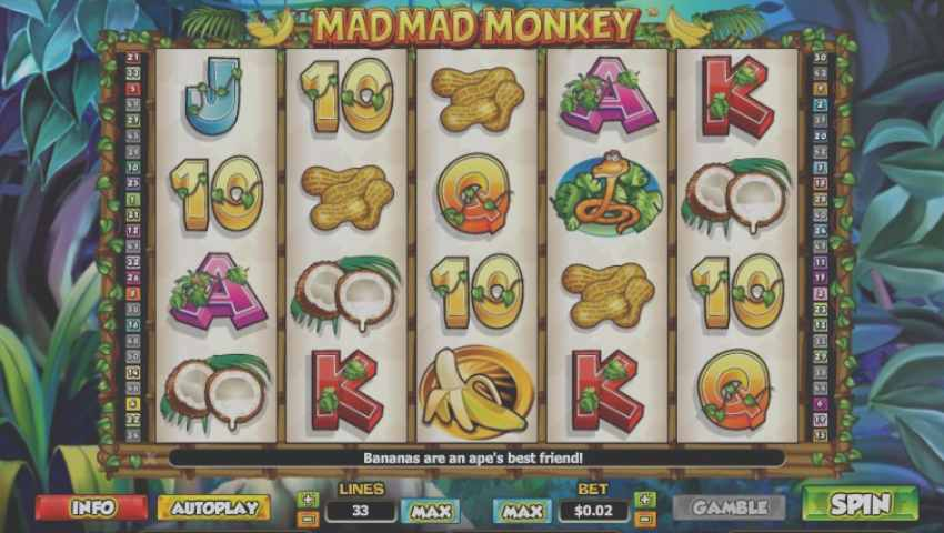 mad mad monkey gratis ecran